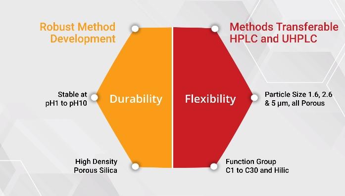 Develosil FlexFire UHPLC and HPLC Columns INDIA